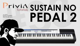 Como Endereçar o Pedal de Sustain Para o Pedal 2 | Casio Privia PX-5S #33